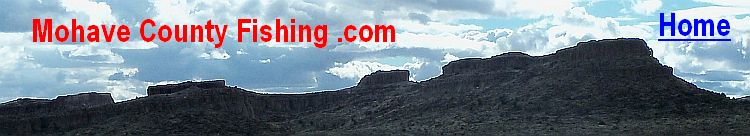 Lake mead on the colorado river in arizona and nevada for Az fishing license