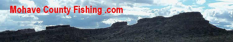 Blog archives portbackup for Fishing license colorado